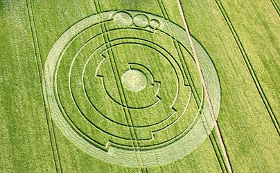 David Wilcock: 2012 e Politica IV: Storia dei Crop Circles (parte 1/2) 16