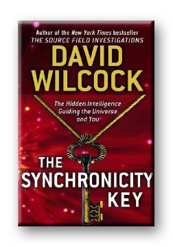 The Synchronicity Key (Book)