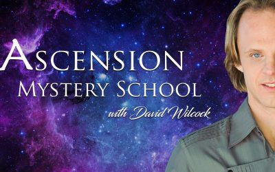 David Wilcock on Ascension Mysteries: 4.5 Hours of New YouTube Videos!